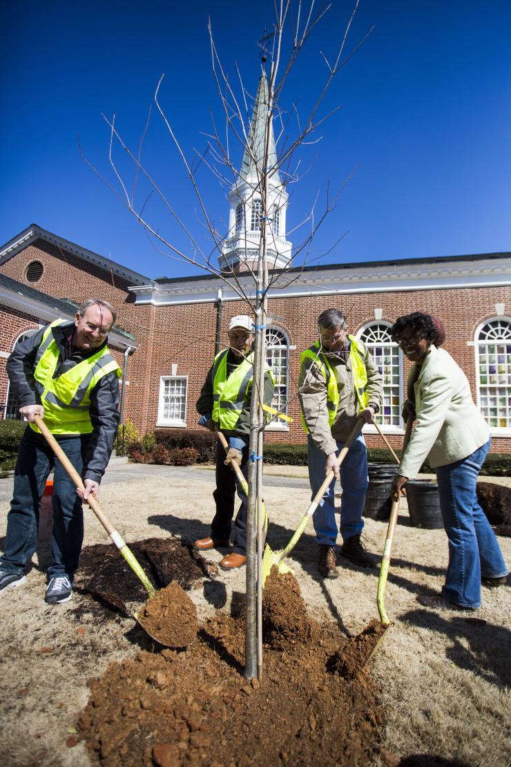 Luettgen, chris tree planting