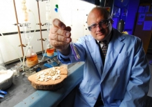 Professor Arthur Ragauskas prepares samples containing cellulose, lignin and hemicellulose for analysis using advanced nuclear magnetic resonance techniques