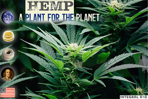 Hemp - A Plant for the Planet